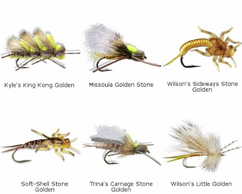 Golden Stonefly Nymph - 8