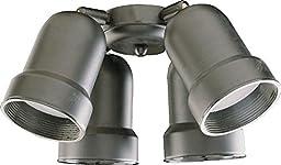 Four Light Matte Black Fan Light Kit 2409-859