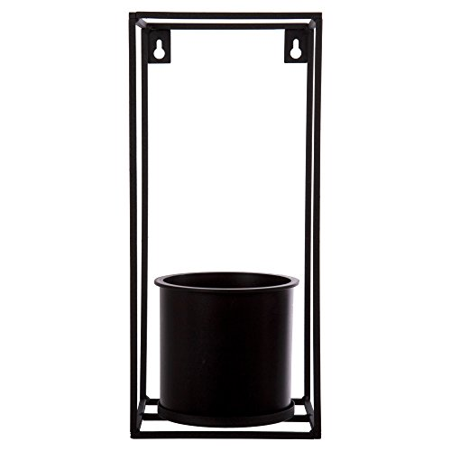 Truu Design Wall Planter with Frame, 5.5 x 12 x 5.5 inches, Black (Design Wall Planter)