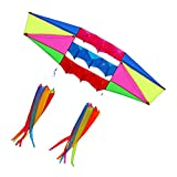 Besra Huge 98inch Single Line 3D Radar Kite with Flying Tools 2.5m Power Box kites with 2 Windsock tails Outdoor Fun Sports for Adults (windsock)