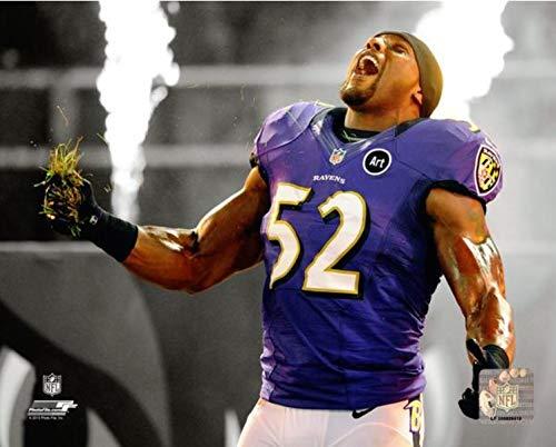 "Ray Lewis Baltimore Ravens Spotlight Action Photo (11"" x 14"")"