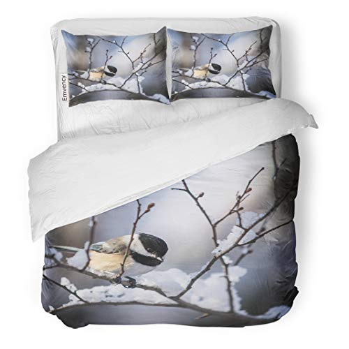 Semtomn Decor Duvet Cover Set King Size Red Snow Black Capped Chickadee in Winter Ottawa Bird 3 Piece Brushed Microfiber Fabric Print Bedding Set Cover ()
