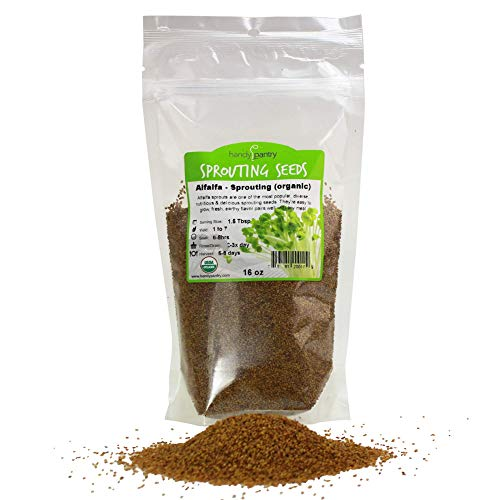 Organic Alfalfa Sprouting Seeds By Handy Pantry Brand | 1 Pound Resealable Bag | Non-GMO Seeds For Growing Sprouts, Food Storage, And More
