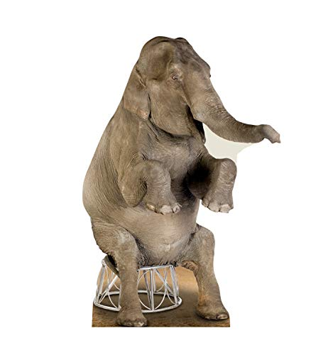 Advanced Graphics Asian Elephant Life Size Cardboard Cutout Standup -