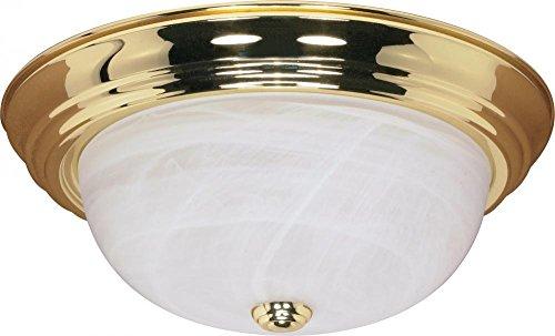 Nuvo Lighting 60 215 Three