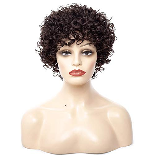 Wig   High Temperature Silk Ms. African Hot Black Explosion Head Small Roll Short Hair Wig Headgear ()