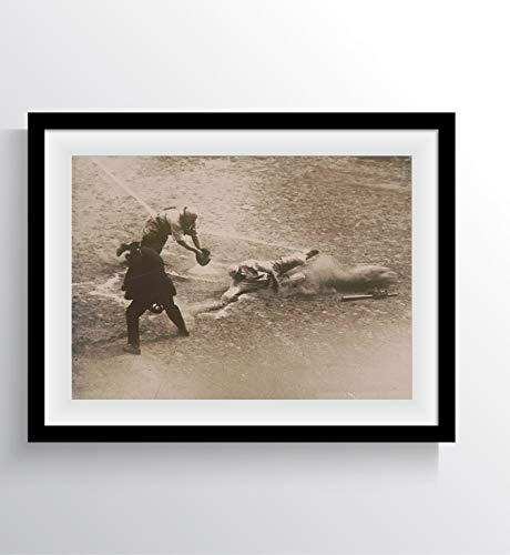 (The umpire's right - New York Giants 1920 Historical Photos Wall Art Printed in Archival Ink and Professional Paper Unique Photograph Most Important History Pictures Reprints (17
