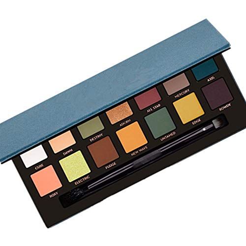 Vivi&2annie Eyeshadow Palette Professional 14 Color Eyeshadow Pearlescent Matte Natural Luster Blue Pink Gold Smoked With Eye Shadow Brush Ideal Gift