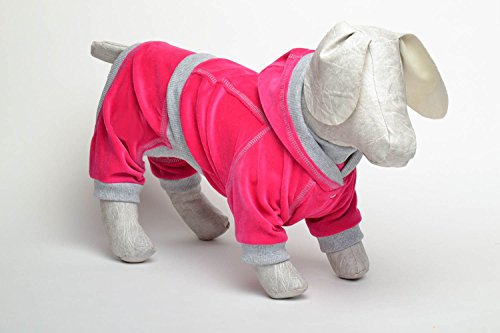 Homemade Dog Suit -