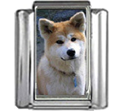 - Stylysh Charms Akita Dog Photo Italian 9mm Link DG030