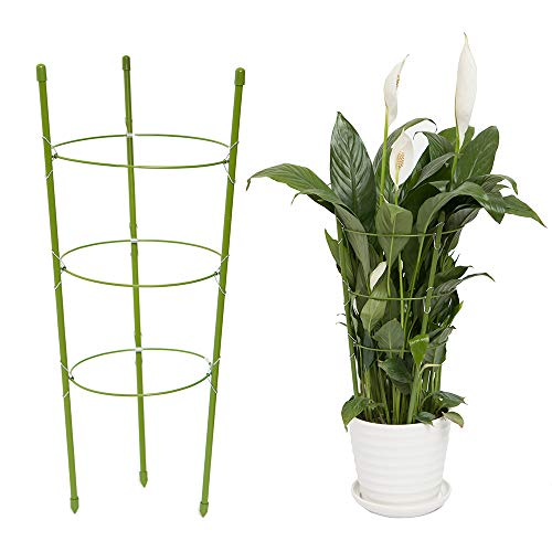 (YiTai Plant Support Cages 17.7 Inches Plant Cages with 3 Adjustable Rings, Supporter Climbing Plants)