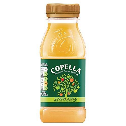 Copella Cloudy Apple Juice 250ml (Pack of 8 x 250ml)