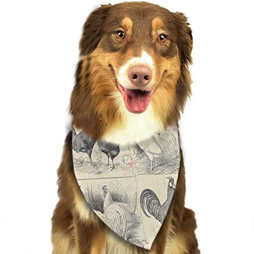 Pet Scarf Dog Bandana Bibs Triangle Head Scarfs Grey Chicken Accessories for Cats Baby Puppy ()