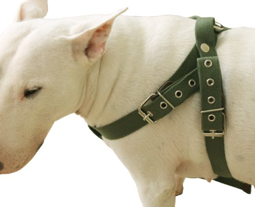 "Cotton Web Dog Harness. Fits Girth 26""-32"". 1"" Wide Straps, Amstaff, Pitbull, Bulldog"
