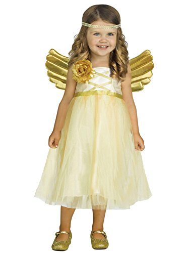 Fun World My Angel Baby Toddler Costume, Small,