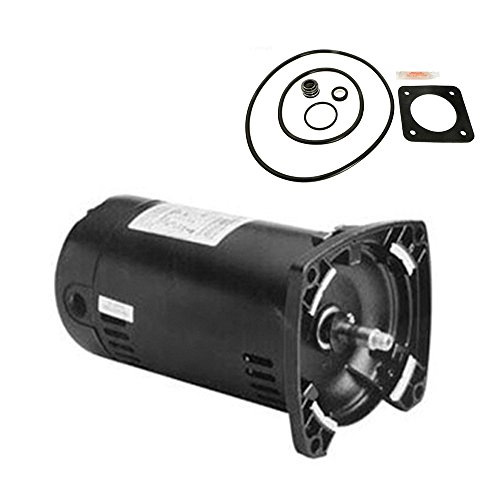 (Puri Tech Replacement Motor Kit for Sta-Rite Dura-Glas .75HP P2RA5D-180L AO Smith USQ1072 with GO-KIT-54 )