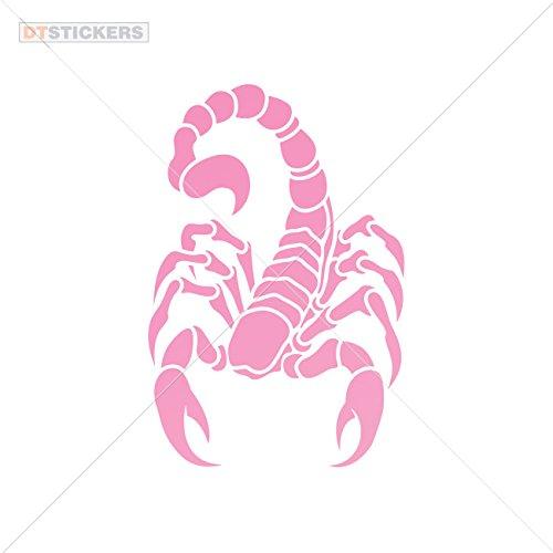 Pink Scorpion - 8
