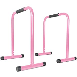 Titan Fitness Pink Dip Station Leg Raise Bars Body Weight Parallettes Crossfit