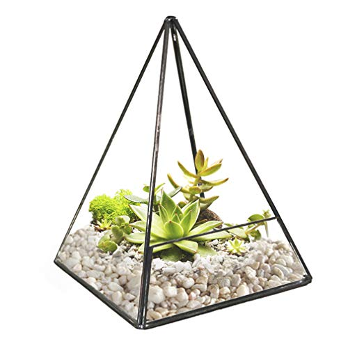 SunGrow Glass Plant Terrarium Globes with Metal Stand - Tall Black S-Hook Plant Stand from Includes Pair of 4.7