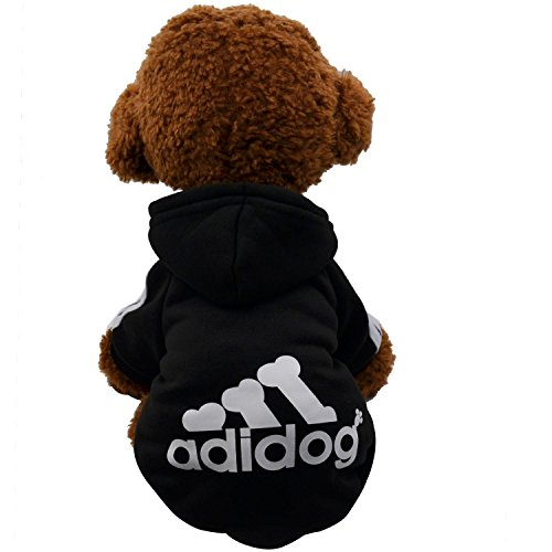 yorkie dog clothes - 9