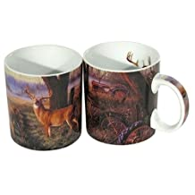Reflective Art End of The Harvest Boxed Coffee Mug, 16-Ounce