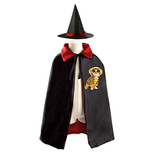 DIY A dog in a hat Costumes Party Dress Up Cape Reversible with Wizard Witch (Diy Dog Costume Hoodie)