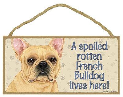 french bulldog dozen - 4