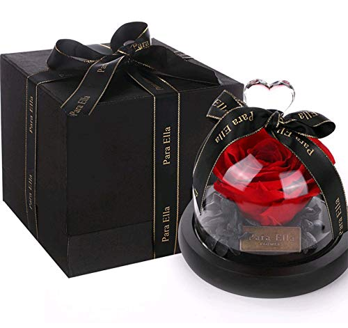 "AISION Valentines Rose, Luxurious Everlasting Flower, 3.15"" Imported Rose Black Hydrangea in A Highly Transparent Glass Dome with Solid Wood Base, Best Gift for Her or Him (Red) from AISION"