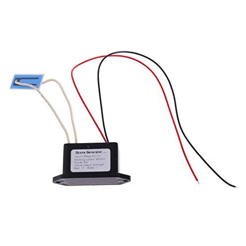 DC 12V 220V DIY Home Ozone Generator Air Purifier Deodorant Output Density 200mg/H O3 (12 V)