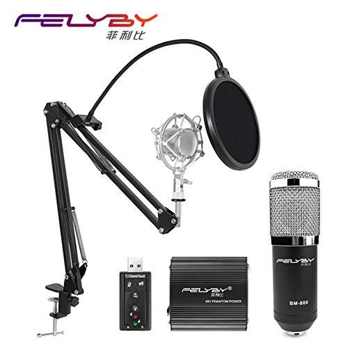 コンデンサーBM-800プロのKTVの心ボーカル&プロオーディオ録音カラオケ:ロシア、スタイル1   B07K2K3C6S