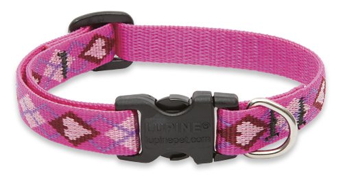 """LupinePet Originals 1/2"""" Puppy Love 8-12"""" Adjustable Collar for Small Dogs"""
