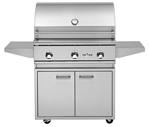 Delta Heat 32 Inch Natural Gas Grill On Cabinet Twin Eagles