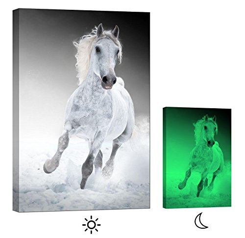 LightFairy Glow in the Dark Canvas Painting - Stretched
