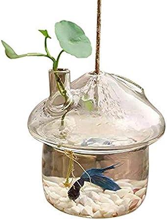 Haude En Forma De Seta Colgante Jarrón De Cristal Jarrón Rumble Tanque De Peces Terrario Contenedor Hogar Jardín Decoración