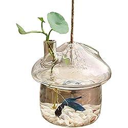 TOOGOO Mushroom-Shaped Hanging Glass Planter Vase Rumble Fish Tank Terrarium Container Home Garden Decor
