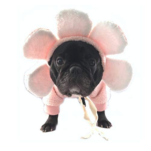 Fit Frenchie Dog Apparel Sweatshirt Sweater Hoodie Flower