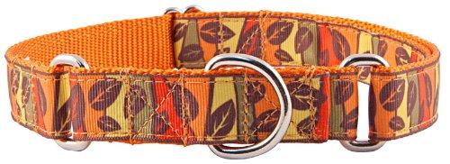 Country Brook Design Fall Leaves on Orange Grosgrain Ribbon Martingale Dog Collar - Medium