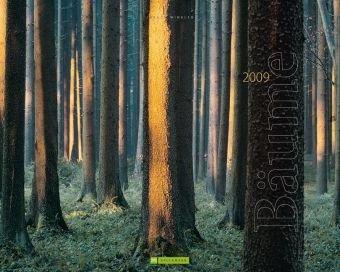 Bäume 2009