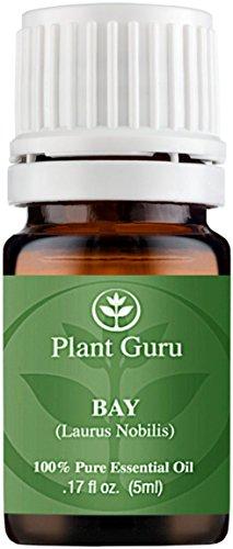 Bay Essential Oil. (Laurus nobilis) 5 ml. 100% Pure, Undiluted, Therapeutic Grade.