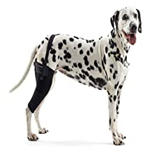Kruuse KR279854 Rehab Knee Protector for Dogs, M Right