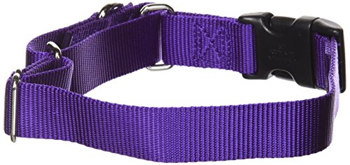 "PetSafe Martingale Collar with Quick Snap Buckle, 1"" Medium, Deep Purple"