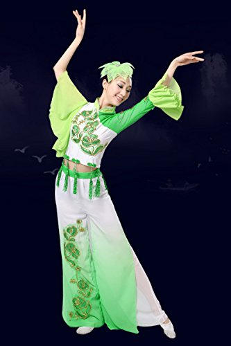 Ethnic Chinese Costume (Into a fine adult female classical dance costumes new elegant Chinese style clothing Yangko fan dance ethnic dance costume for women girl)