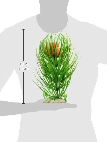 Amazon.com: eDealMax ponderado Detalle acuario Base Floral acuática ...