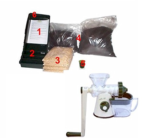 Wheatgrass Growing Kit Grow Fresh Wheatgrass With Manual Lexen Juicer Brow Farm