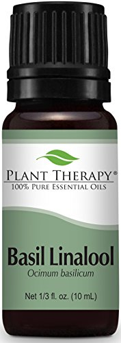 Plant Therapy Basil (linalool CT) Essential Oil. 100% Pure, Undiluted, Therapeutic Grade. 10 ml (1/3 oz). - Foods Basil Oil