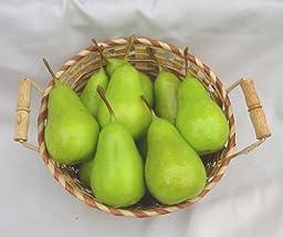 12 Piece Green Pear Decorative Fruit