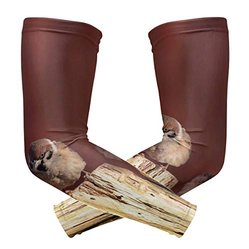 (Arm Sleeves Sparrows Animal Birds Mens Sun UV Protection Sleeves Arm Warmers Cool Long Set Covers)