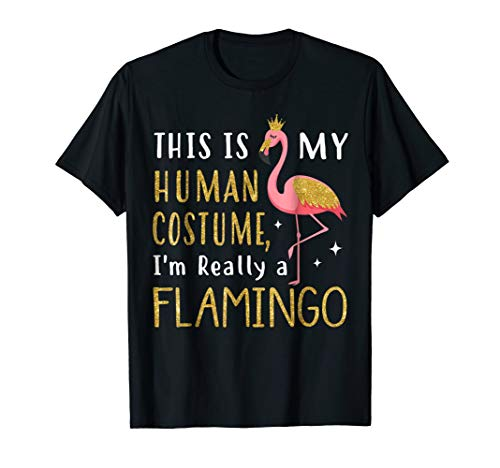 This Is My Human Costume I'm Really A Flamingo T-Shirt -