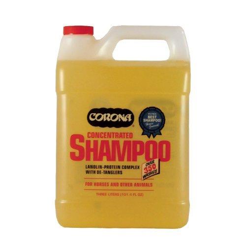Corona Shampoo Concentrate - 3 liter