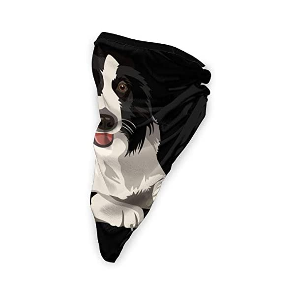 Border Collie Neck Gaiter Warmer Windproof Face Mask Scarf Outdoor Sports Mask 3